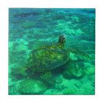 Tortuga de mar hawaiana de Honu Azulejos Cerámicos