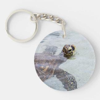 Tortuga de mar hawaiana de Honu - tortugas de Hawa Llaveros