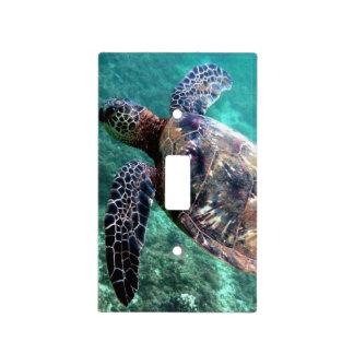 Tortuga de mar hawaiana placa para interruptor