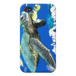 tortuga de mar iPhone 4 cárcasas