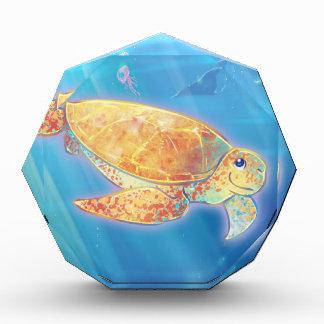Tortuga de mar linda