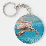 Tortuga de mar llaveros personalizados