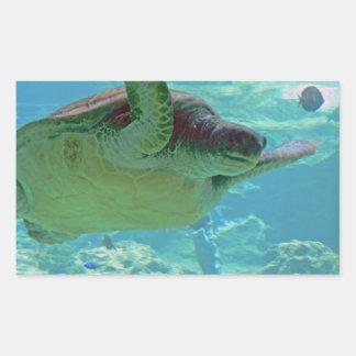 Tortuga de mar etiqueta