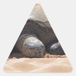 Tortuga de mar calcomanía de triangulo personalizadas