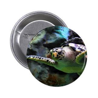 Tortuga de mar pin