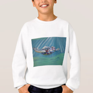 Tortuga de mar playeras