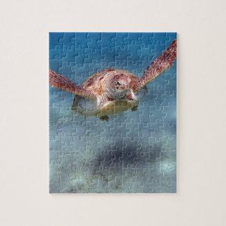 tortuga de mar rompecabeza con fotos