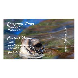 Tortuga de mar que empuja la cabeza encima de plantilla de tarjeta de negocio