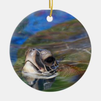 Tortuga de mar que empuja la cabeza para arriba ornato