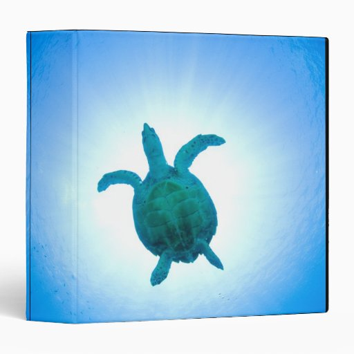 """Tortuga de mar que nada bajo el agua carpeta 1 1/2"""""""