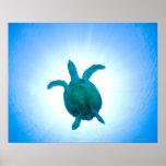 Tortuga de mar que nada bajo el agua póster