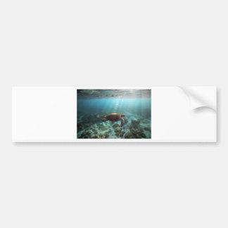 Tortuga de mar que nada la laguna subacuática del  pegatina para auto