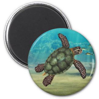 Tortuga de mar redonda imán redondo 5 cm