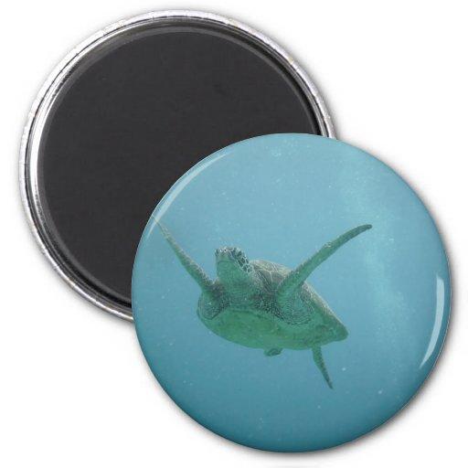 Tortuga de mar subacuática iman para frigorífico