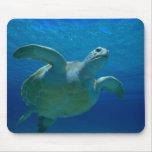 Tortuga de mar tapete de ratones