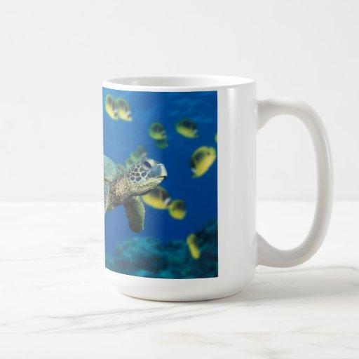 Tortuga de mar taza