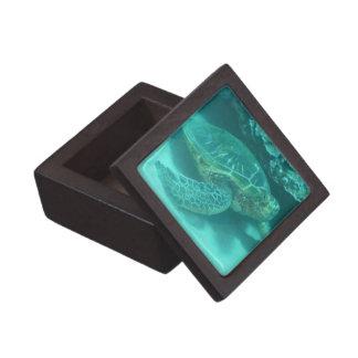 Tortuga de mar verde caja de regalo de calidad