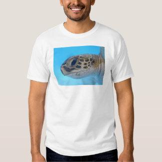 Tortuga de mar verde camisas