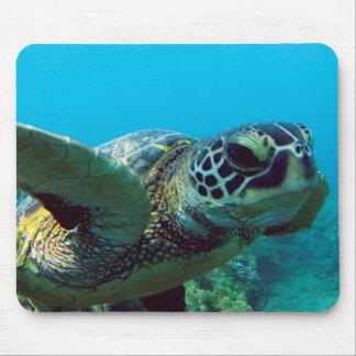 Tortuga de mar verde de Hawaii Alfombrillas De Raton