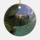 Tortuga de mar verde de Hawaii Ornamentos De Navidad