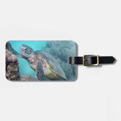 Tortuga de mar verde de Hawaii Etiqueta Para Equipaje