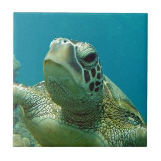 Tortuga de mar verde de Hawaii - Honu Azulejo Cuadrado Pequeño