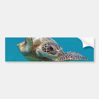 Tortuga de mar verde de Hawaii - Honu Pegatina Para Auto