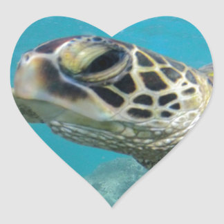 Tortuga de mar verde de Hawaii Pegatina En Forma De Corazón