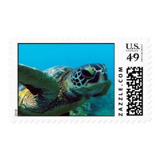 Tortuga de mar verde de Hawaii Sello Postal
