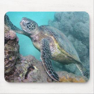 Tortuga de mar verde de Hawaii Tapete De Raton
