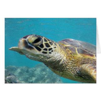 Tortuga de mar verde de Hawaii Tarjeta De Felicitación