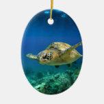 Tortuga de mar verde del paraíso de las Islas Galá Ornamento Para Reyes Magos