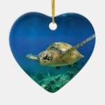 Tortuga de mar verde del paraíso de las Islas Galá Adornos De Navidad