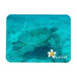Tortuga de mar verde hawaiana imanes de vinilo