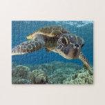 Tortuga de mar verde hawaiana puzzle con fotos