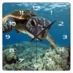 Tortuga de mar verde hawaiana reloj de pared