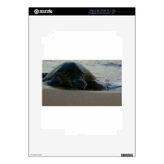 Tortuga de mar verde iPad 2 skins