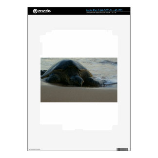 Tortuga de mar verde iPad 3 skins