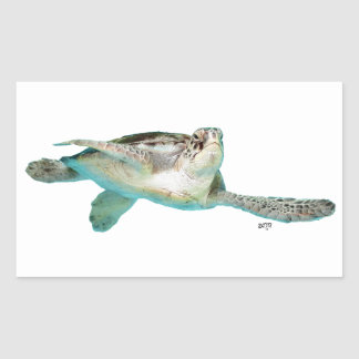 Tortuga de mar verde juvenil rectangular altavoces