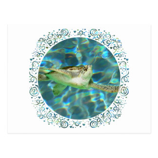 Tortuga de mar verde juvenil tarjeta postal