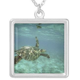 Tortuga de mar verde, (mydas del Chelonia), costa  Pendientes Personalizados