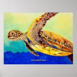 tortuga de mar verde posters