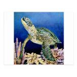 Tortuga de mar verde que mira postal