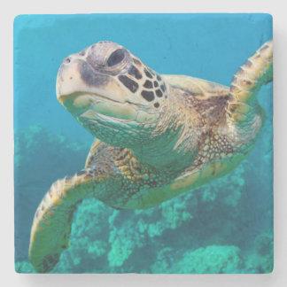 Tortuga de mar verde que nada sobre el arrecife de posavasos de piedra