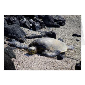 Tortuga de mar verde que se asolea, Hawaii, Tarjeta De Felicitación