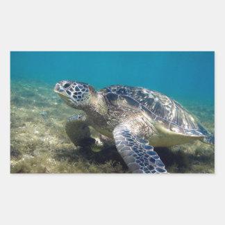 Tortuga de mar verde que se relaja bajo el agua rectangular pegatina