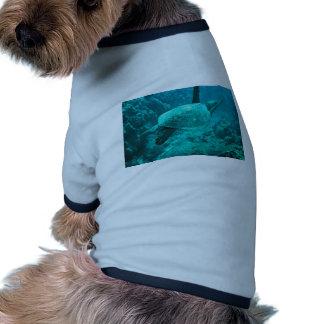 Tortuga de mar verde camisas de mascota