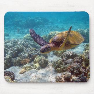 Tortuga de mar verde tapetes de raton