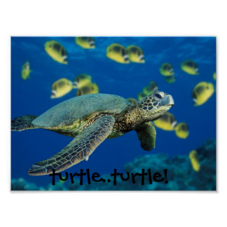 ¡Tortuga de mar verde, tortuga. .turtle! Póster
