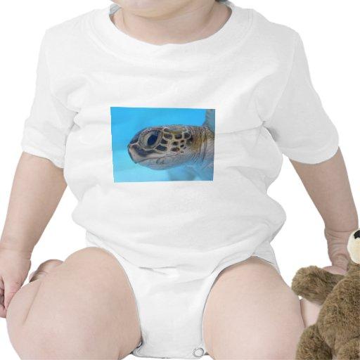 Tortuga de mar verde trajes de bebé